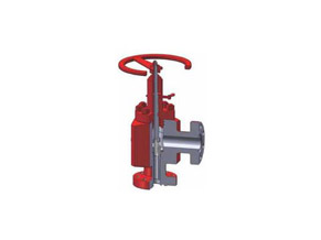 What are the Sealing Surfaces of the Valve?